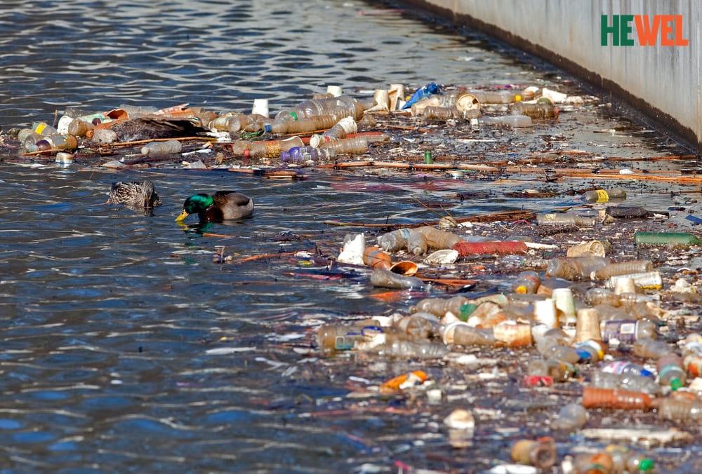 Ô nhiễm nguồn nước là nguyên nhân hàng đầu gây bệnh gan-ung thư gan
