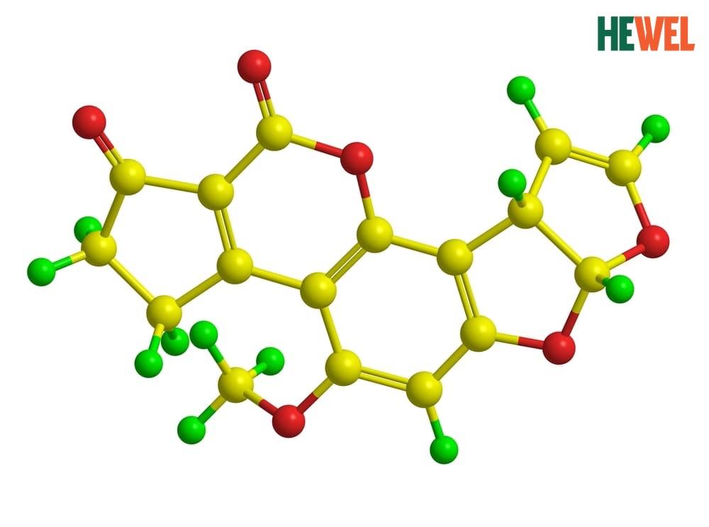 Cấu trúc phân tử của độc chất aflatoxin.