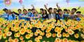 Ngày hội hoa hướng dương lần 9: Vì sức khỏe,...