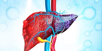 Rối loạn men gan – cảnh báo tình trạng gan tổn thương nghiêm trọng