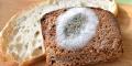 Nấm mốc từ các loại thực phẩm gây hại cho gan